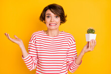 Photo Of Stressed Brunette Lady Hold Plant Wear Red Shirt Isolated On Orange Color Background