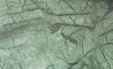 Abstract Marble Tile With Green Malachite Pattern
