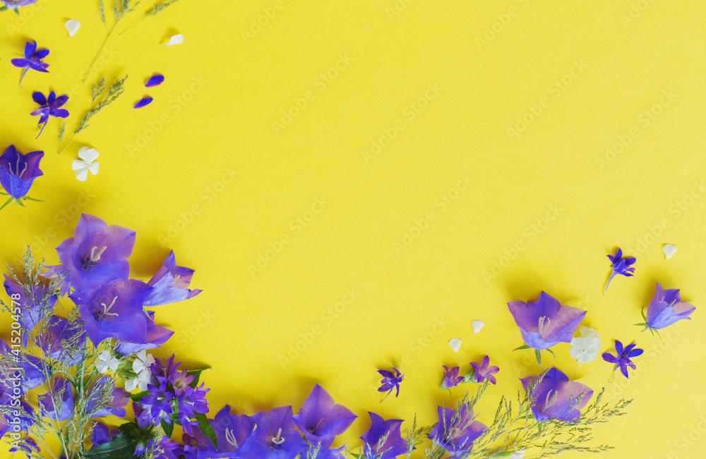 Fototapeta blue wild flowers on yellow background