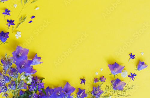 blue wild flowers on yellow background © Maya Kruchancova
