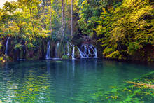 Park In Croatia, Central Europe
