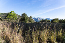 Landscape Of The Mountains Of Sant Miquel Del Fai In Catalonia, Spain