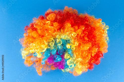 Obraz na plátně Funny Party concept Rainbow Clown Wig Fluffy Afro Synthetic Cosplay Anime Fancy