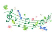 音符と緑の葉っぱと青い鳥の5線符のイラスト(春) 手描き色鉛筆