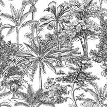 Toile Tropical Palms Tree, Plant Vintage Graphic Seamless Pattern. Floral Landscape Botanical Jungle.