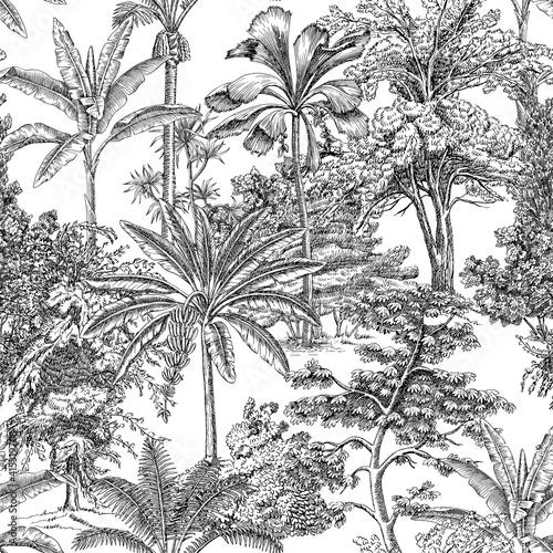 Tapety Tropikalne  tropikalne-palmy-toaletowe-roslina-vintage-graficzny-wzor-kwiatowy-krajobraz-botaniczna-dzungla