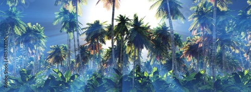Fototapeta Palm trees in the sun, a grove of palm trees in the morning in the fog, sunlight in the branches of palm trees, 3D rendering obraz