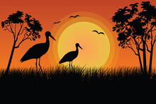 Flat Illustration Of A Stork In A Swamp Behind The Grass At Sunset