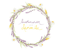 Cards For Wedding Invitation. Vector Design Element, Wreaths Of Lavender, Chamomile And Wheat Ears, Medicinal Herbs, Calligraphy Lettering.