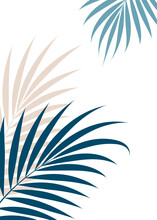 Luxurious Tropical Leaves On A White Background.