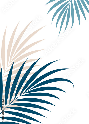 Canvas Luxurious tropical leaves on a white background.