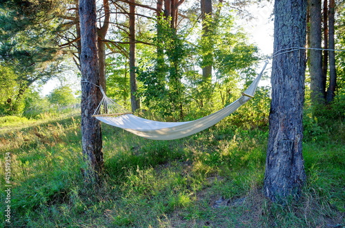 Hammock in the forest on a summer evening © koromelena