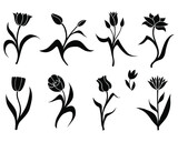 Fototapeta Tulipany - Vector illustrations of silhouette set of decorative tulips