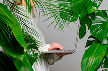 Female Hand Holding Laptop On Background With Palm Leaves