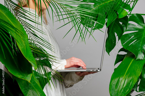 female hand holding laptop on background with palm leaves © Masson