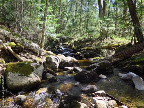 Tableau sur Toile a creek in the Parc Regional de la Montagne du Diable, Quebec, Canada, May