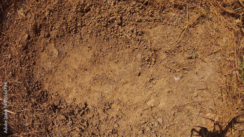 Leinwand Poster Brown soil texture background