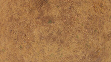 Brown Dry Grass Texture Background