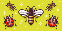 Cartoon Insects Banner Illustration