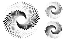 Set Of Gray Spirals With Elements Over White Backdrop. Abstract Background For Any Projects. Yin And Yang Symbol.