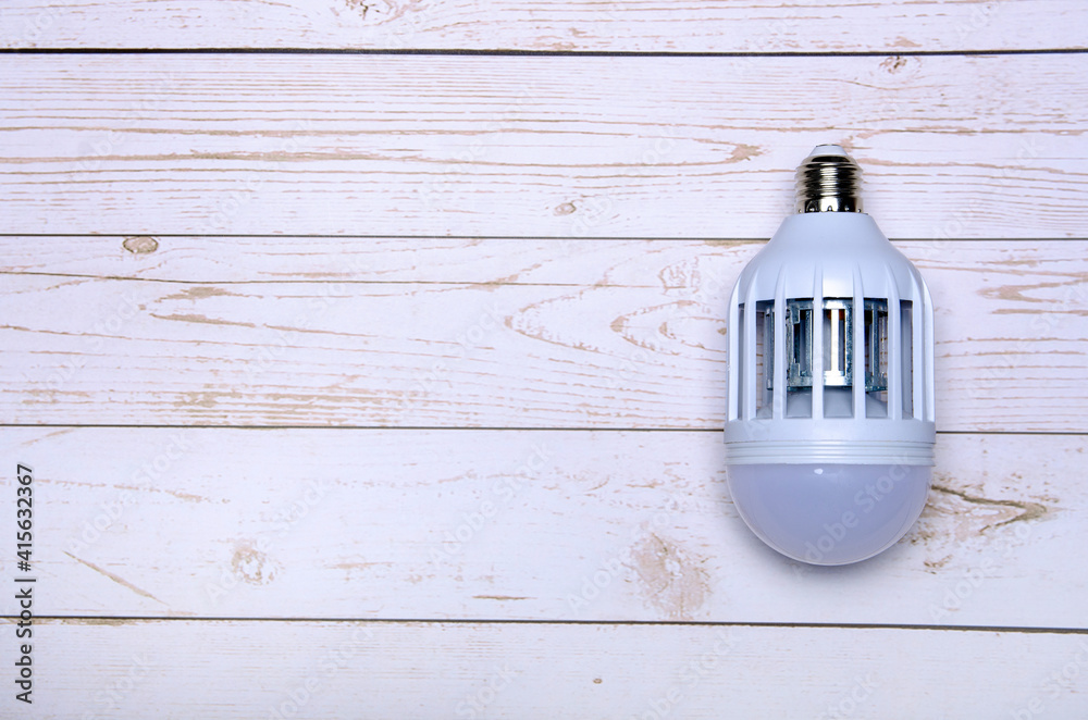Fototapeta kills mosquito light bulb on wooden background