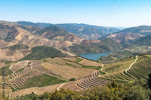 Stampa su Tela Douro Valley, Portugal