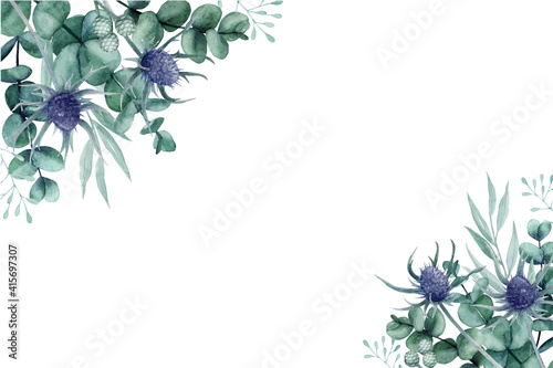 Fotografie, Obraz Beautiful thistle flower and eucalyptus leaves floral background
