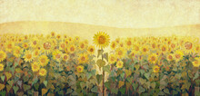 A Field Of Sunflowers. Oil Painting Texture.