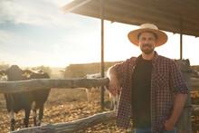 Worker Standing Near Cow Pen On Farm. Animal Husbandry