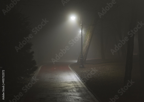 Fotografía lantern lights on the road in the forest in the fog