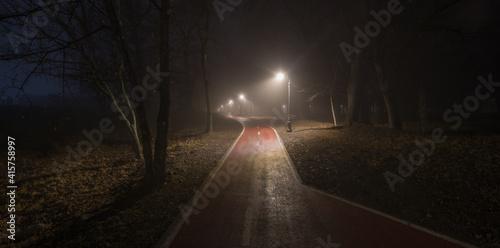 lantern lights on the red alley in the fog Fototapeta