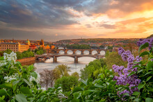 Sunset View To Vltava River And The Bridges From Letna Gardens, Popular Recreation Area In Prague.