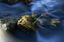 Wildes Mildes Wasser