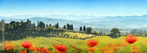 Beautiful Landscape with Poppies Flowers. Italy Tuscany Fotobehang