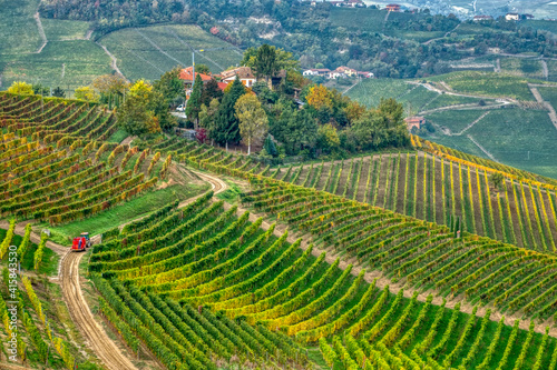 Tela The Langhe - is a UNESCO World Heritage Site.