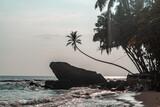 Fototapeta Kamienie - Duża skała na tle palm i oceanu, tropikalne wybrzeże.