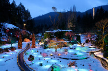 Winter At The Sunken Garden, The Butchart Gardens, Brentwood Bay, British Columbia, Canada.