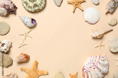 Fototapeta Frame of seashells on light background, flat lay. Space for text