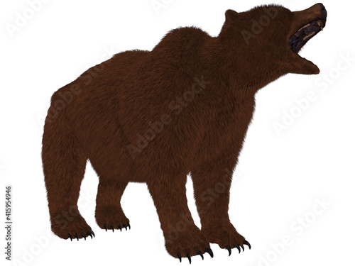 3d render of a grizzly bear Fototapet