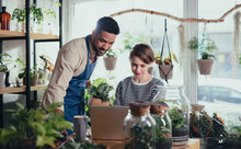 Shop Assistants With Laptop Working In Potted Plant Store, Small Business Concept.