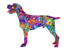 German Wirehaired Pointer Dog Watercolor, Abstract Painting. Watercolor Illustration Rainbow, Colorful, Decoration Wall Art.