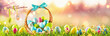 canvas print picture Easter Eggs in a Basket on Green Grass Sunny Background