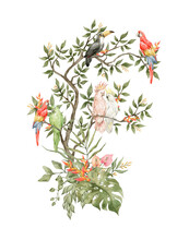 Watercolor Compositions With Colorful Bright Parrots On A Tree. Eden Garden, Birds, Flowers, Tropical Leaves. Ara, Toucan, Cockatoo, In Blossom Tree.