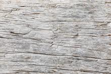 Macro Close-up Texture Of A Wood Grain
