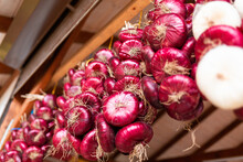 A Bunch Of Fresh Red Onions Hangs In The Market. Close-up View From Below. Organic Farming