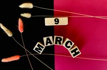 March 9 On Wooden Cubes On A Divided Pink And Black Background.Next To Fluffy Twigs .Calendar For March .