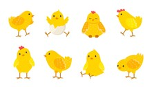 Cartoon Easter Chicks. Baby Farm Birds With Yellow Feathers. Cheerful Little Chickens And Roosters Activities. Domestic Animals Hatched From Eggs. Isolated Newborn Poultry, Vector Set