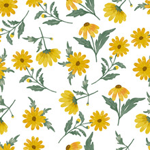 Yellow Daisy Flower Watercolor Pattern Seamless Design Hand Drawing With Yellow Flower Color And Green Leaf Color