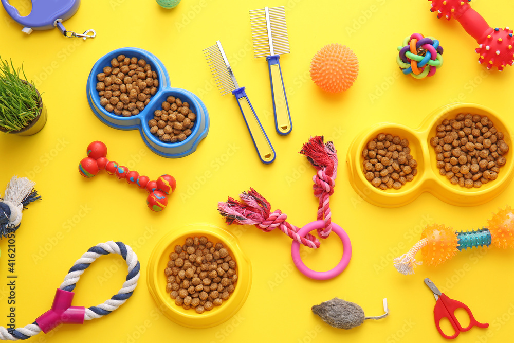 Fototapeta Different pet care accessories on color background