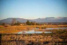 The East 90 - Skagit Wildlife Area Samish Unit